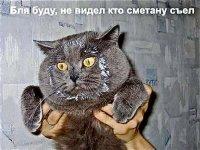 Igor Αфанасьев, 4 октября , Новокузнецк, id7940883